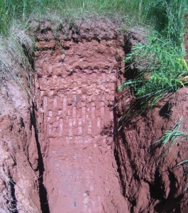 Soil conditions at the site consisted of compact, fine sandy loam glacial till with layers of sandstone rock.